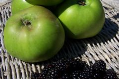 How do you make Blackberry & Apple Jam | Find a recipe for Blackberry & Apple Jam