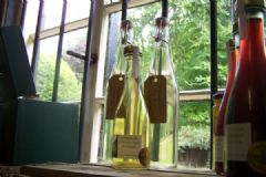 How do you make Elderflower Vinegar | Find a recipe for Elderflower Vinegar