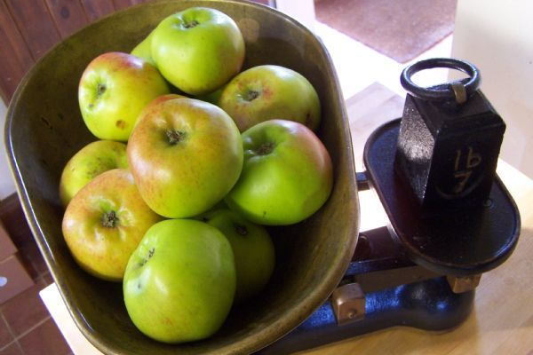 How to make Apple, Sage and Cider Sauce | Rosie Makes Jam Recipes