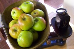 How do you make Apple, Sage and Cider Sauce | Find a recipe for Apple, Sage and Cider Sauce