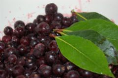How do you make Blackcurrant and Bay Vinegar | Find a recipe for Blackcurrant and Bay Vinegar